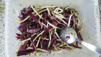 Salade choux pousse de haricot